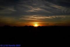 crepúsculo de Pinhal - 22-06-2019