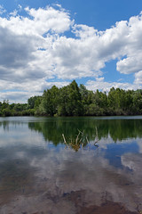 Episy swamp nature reserve and  bird sanctuary - Photo of Nonville