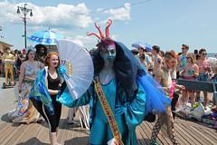 Mr Coney Island