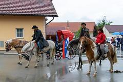 Blagoslov konj Drnovo