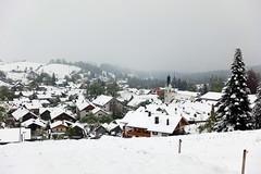 2019-05-04 05-10 Bad Kohlgrub-Hörnle 015