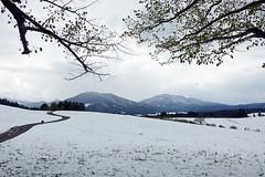 2019-05-04 05-10 Bad Kohlgrub-Hörnle 047