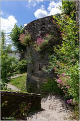 Rochefort-en-Terre; Vestiges du château médiéval.