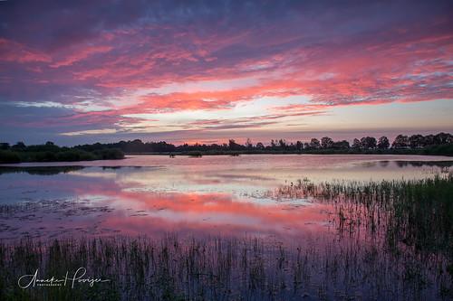 The colors of Sunrise II