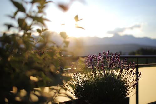 Sunset @ the Terrasse