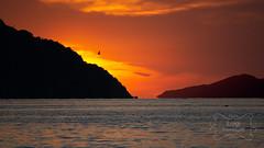 Twilight on the sea
