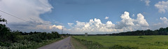 Stormy Hilltop panorama
