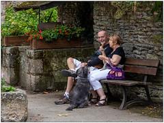 Rochefort-en-Terre;