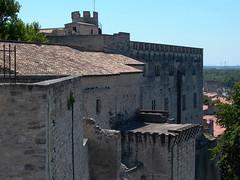 Petit Palais Fortifications - Photo of Avignon