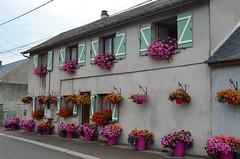 Pink House [Cayeux-Sur-Mer - 18 August 2016]