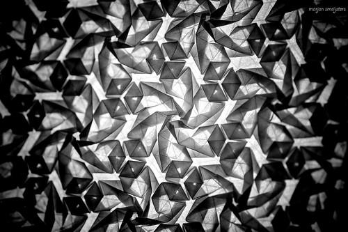 Starry Flower (Marjan Smeijsters)