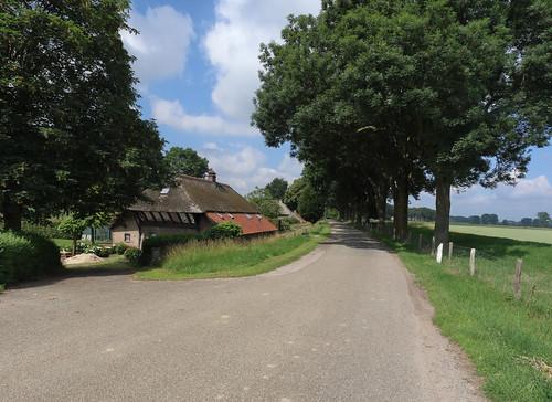 Neerloon - Maasdijk