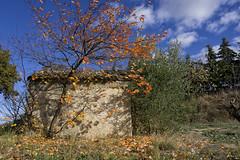 Étang asséché de Marseillette 10 - Photo of Rieux-Minervois