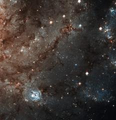 Fireworks Galaxy, NGC 6946