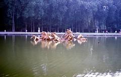 1995-08-20 Versailles 11 - Photo of Magny-les-Hameaux