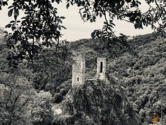 Salut les Copains en Aveyron 23.06.2019_261