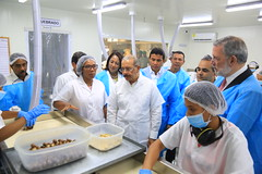 Presidente Danilo Medina participa en inicio de operaciones planta procesadora de macadamia de la firma La Loma, primera en el Caribe
