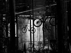 Lyon - Chez le marchand de vélos. - Photo of Irigny