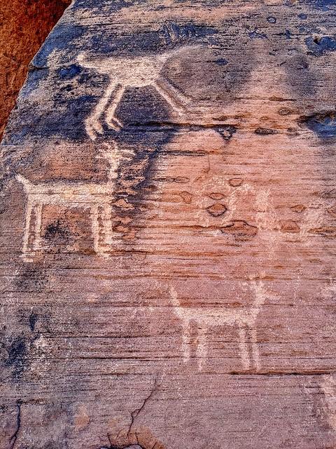 Rock Art (petroglyphs) at Lyman Lake State Park, AZ.