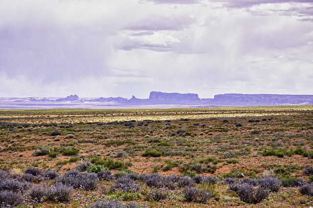 Monument Valley, Springtime