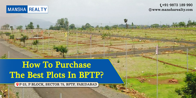 How to purchase the best plots in BPTP