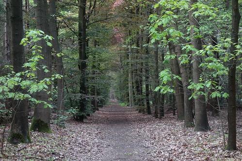 Landgoed Oosterheide, Oosterhout
