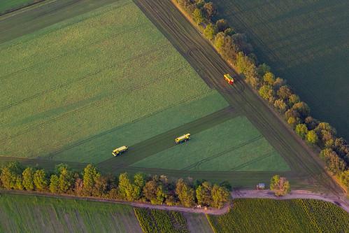 Ballonvaart - oogsten