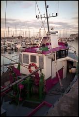 Bateau de pêche à Saint-Vaast