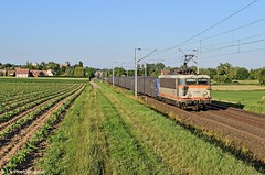 BB 25673 - 830140 Strasbourg - Saverne - Photo of Buswiller