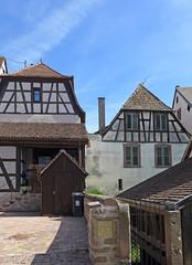 L'arrière des maisons - Photo of Bergheim