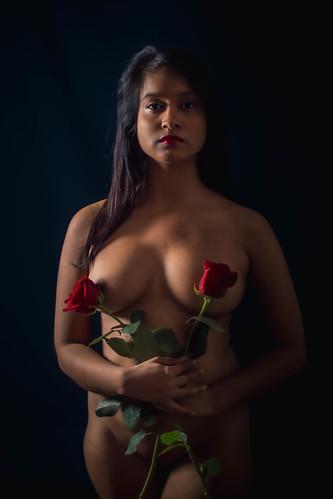 Mélusine roses 2