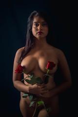 Mélusine roses 2 - Photo of Roche-la-Molière