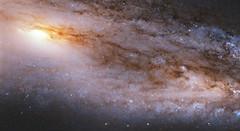 Trillions of stars