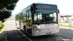 Irisbus Iveco Citelis n°2039 de Synchro BUS