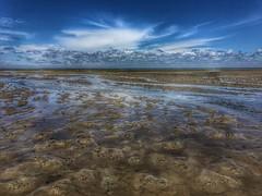 Basse Mer - Photo of Le Teich