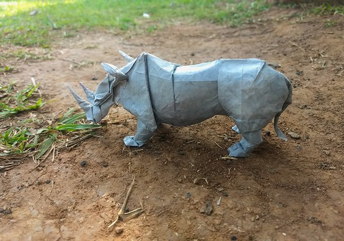 Rhinoceros by Satoshi Kamiya Double Thai unryu 34x34cm