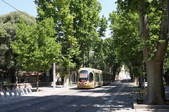 TAM Tram 2051, Montpellier - Photo of Saint-Aunès