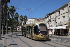 TAM Tram 2041, Monpellier - Photo of Saint-Aunès