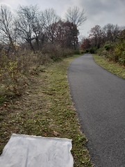 A walking and bike path with ticks