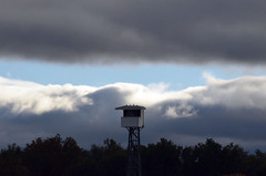 2018-10-27 (64) head-on main track camera tower at Laurel Park - big break in the clouds