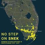 No Step on Snek