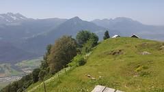 2019 06 Vtt Le Mole (Hte-Savoie) - Alt. 1857m