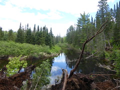 Whiskey Rapids Trail