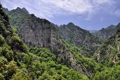 _DSC4842 : aux environs de l'abbaye St Martin du Canigou - Photo of Serdinya