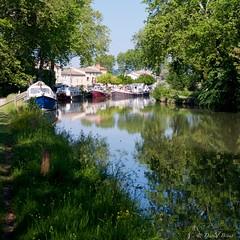 Canal du midi (IMGP2242) - Photo of Gourvieille