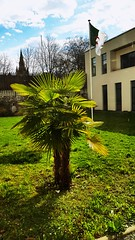 consulat d'Algérie Grenoble - Photo of Fontaine