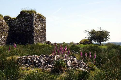 Moygara Castle 1