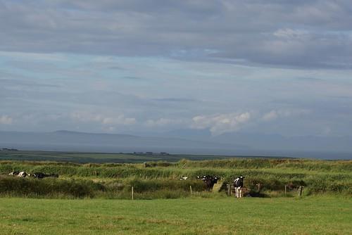 Cross (close to Loop Head) - Irish Landscape
