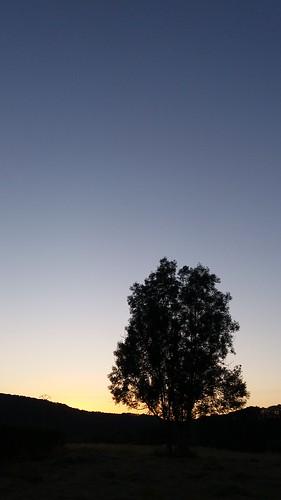 Sunset in Jupille