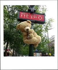 PARIS - BEARS